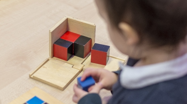 Montessori in action